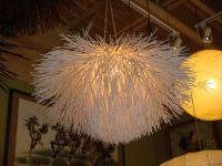 Hanging Sea Urchin Lamp from Thailand....made from ...