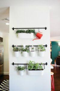 Create an indoor herb garden, even in the smallest of ...