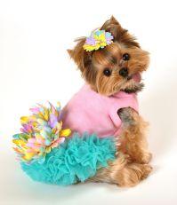 Leilani Dog Dress   All Things Pet Care/ Fashion ...
