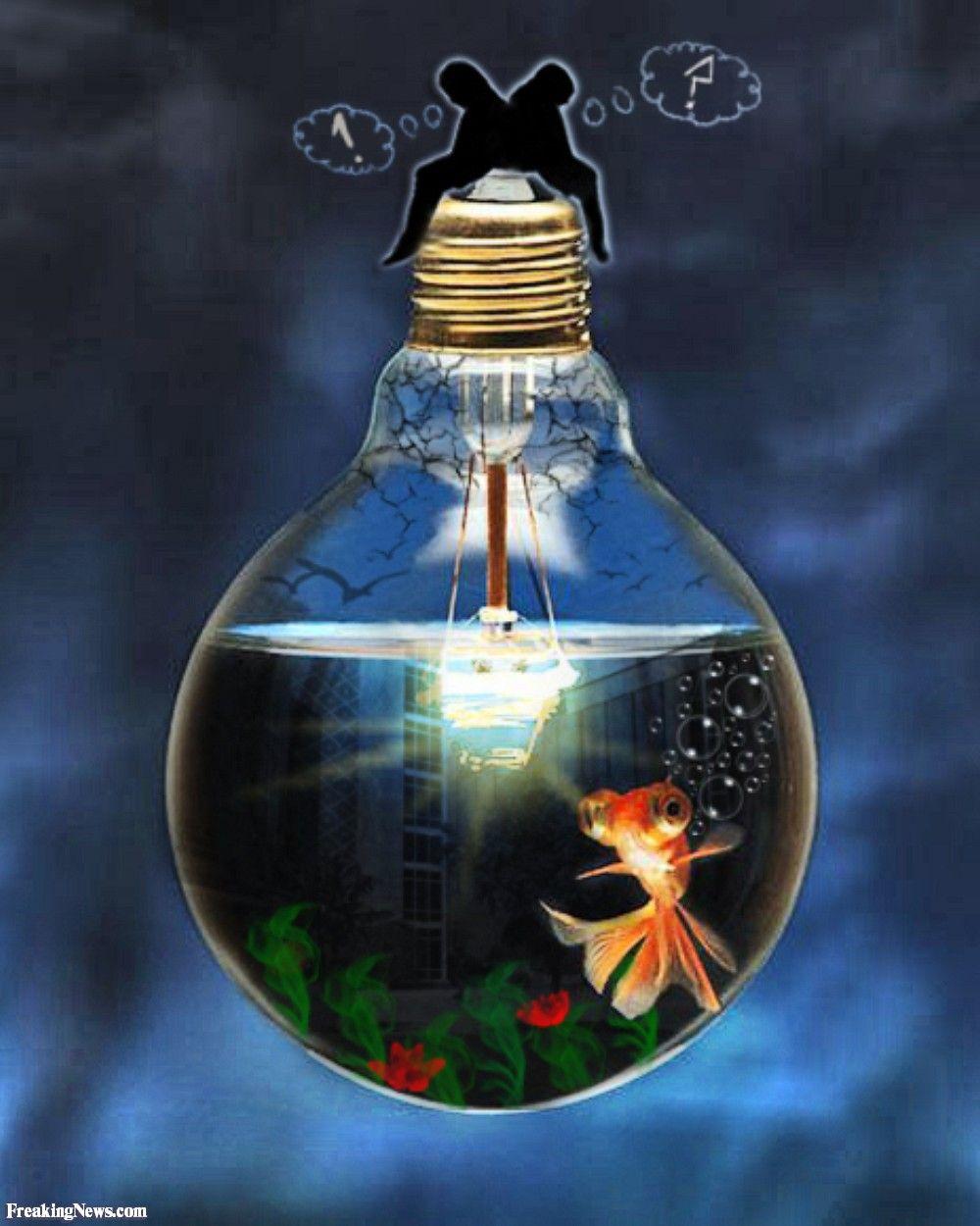 Light bulb aquarium 52215 jpg 1000 1250 arte pinterest lightbulbs