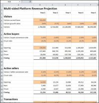 multi-sided platform revenue projection template v 1.01 ...