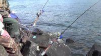 Bank Station - Bank Fishing Rod Holder - Sand Spike - Surf ...