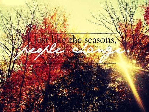 Free Falling Leaves Live Wallpaper Autumn Quotes Tumblr Google Search Changing Leaves And
