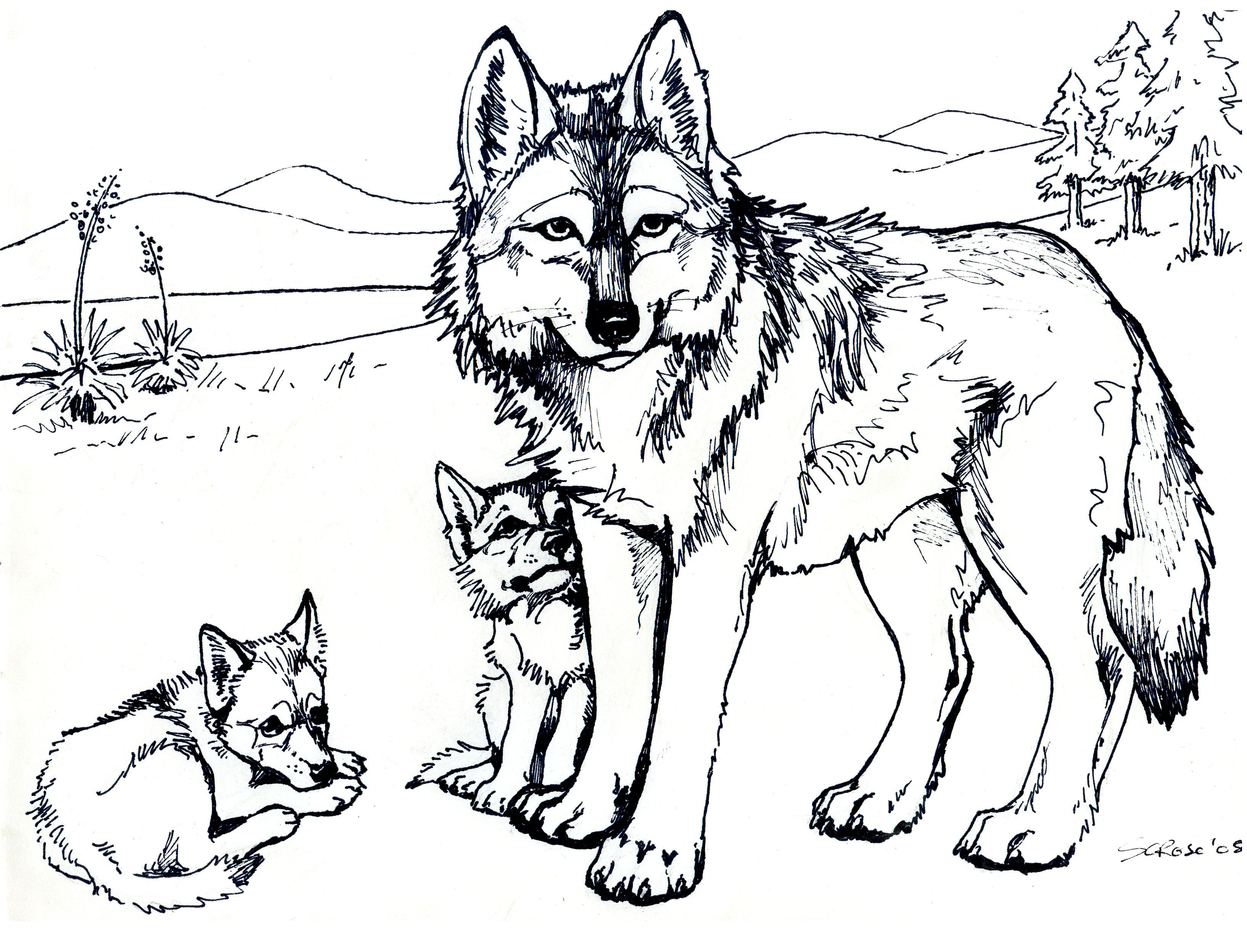 Download and print printable free wolf coloring pages for adults