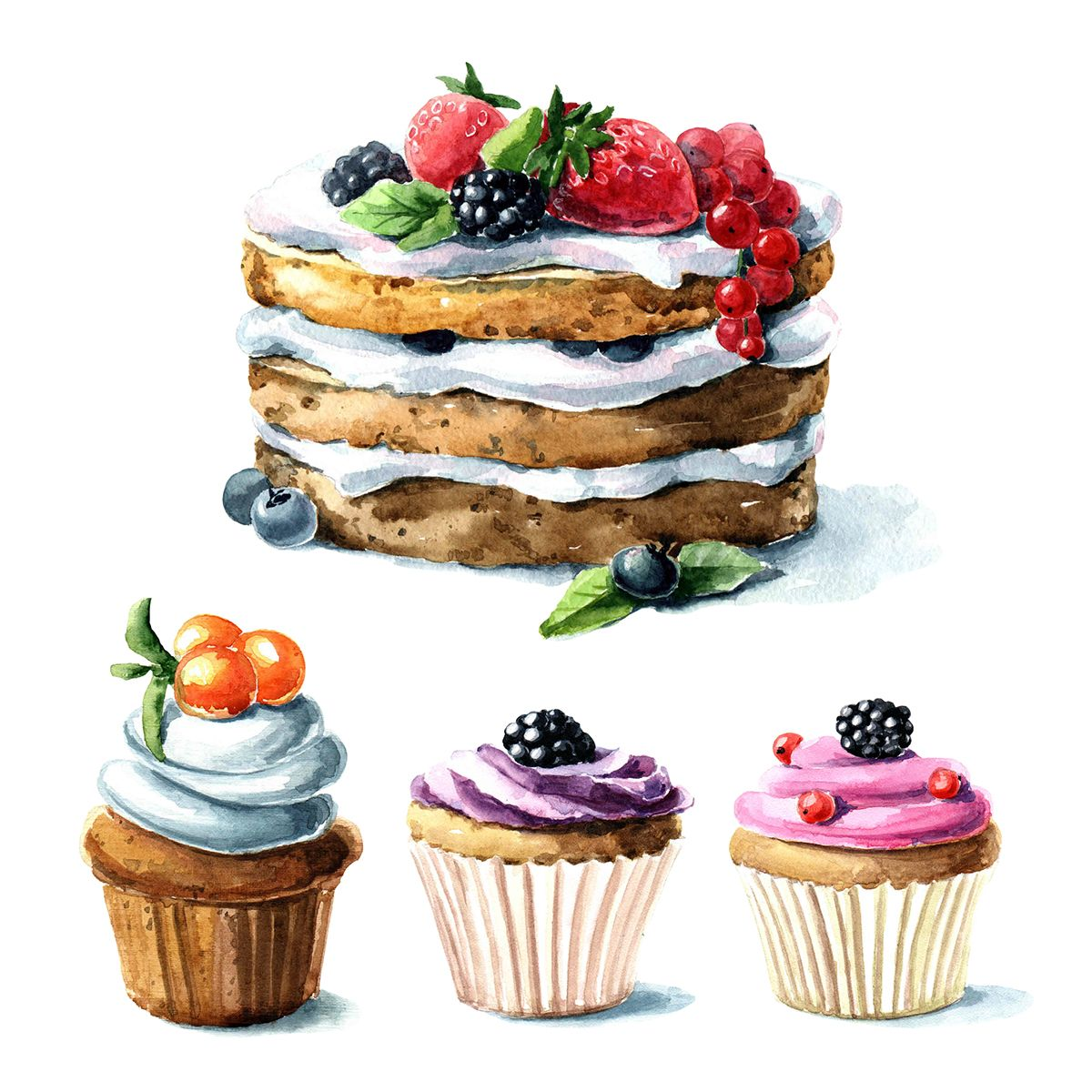 Drawing Cake Colour Watercolor Berry Dessert On Behance Cakes Watercolor