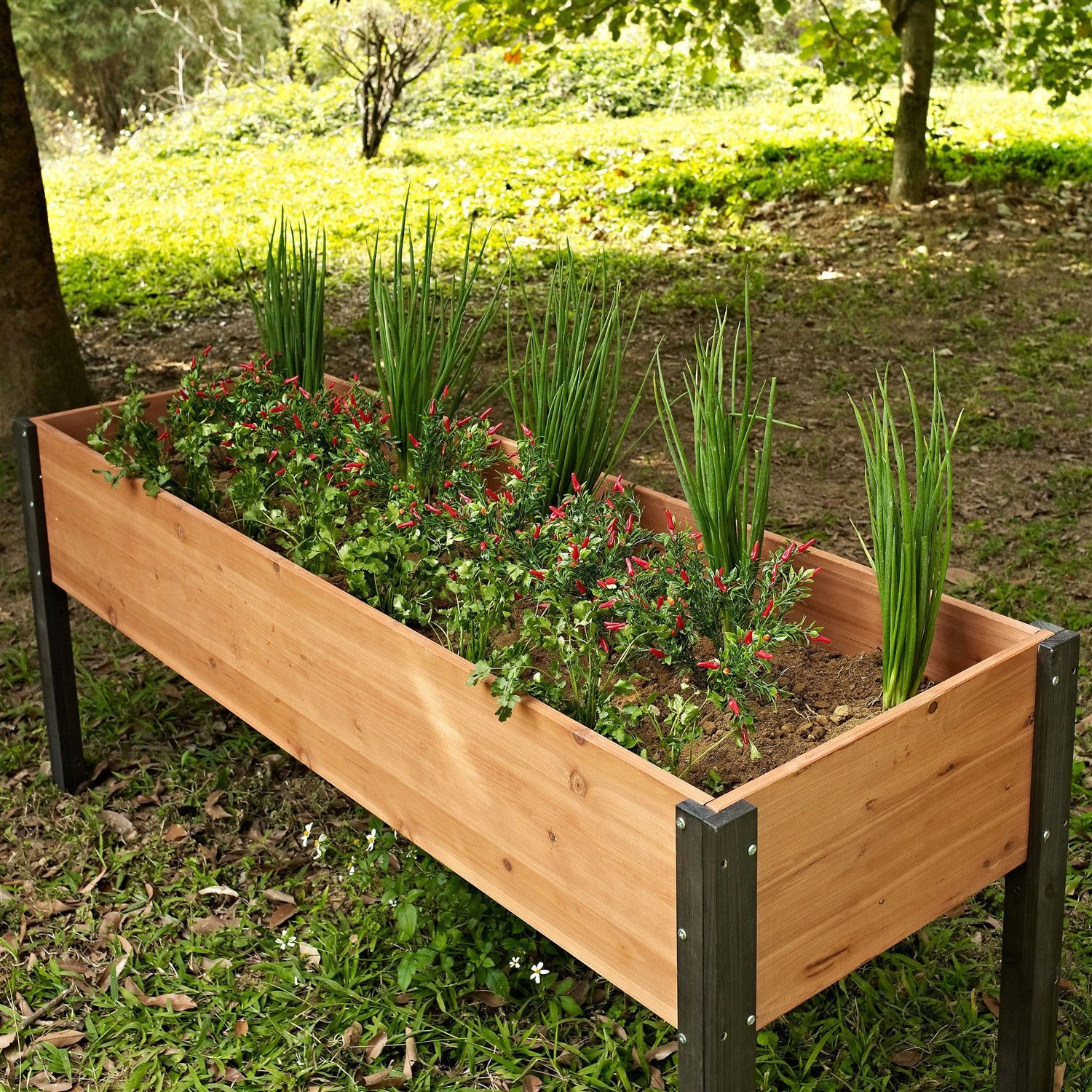 Diy Raised Garden Bed On Legs Elevated Outdoor Raised Garden Bed Planter Box 70 X 24 X