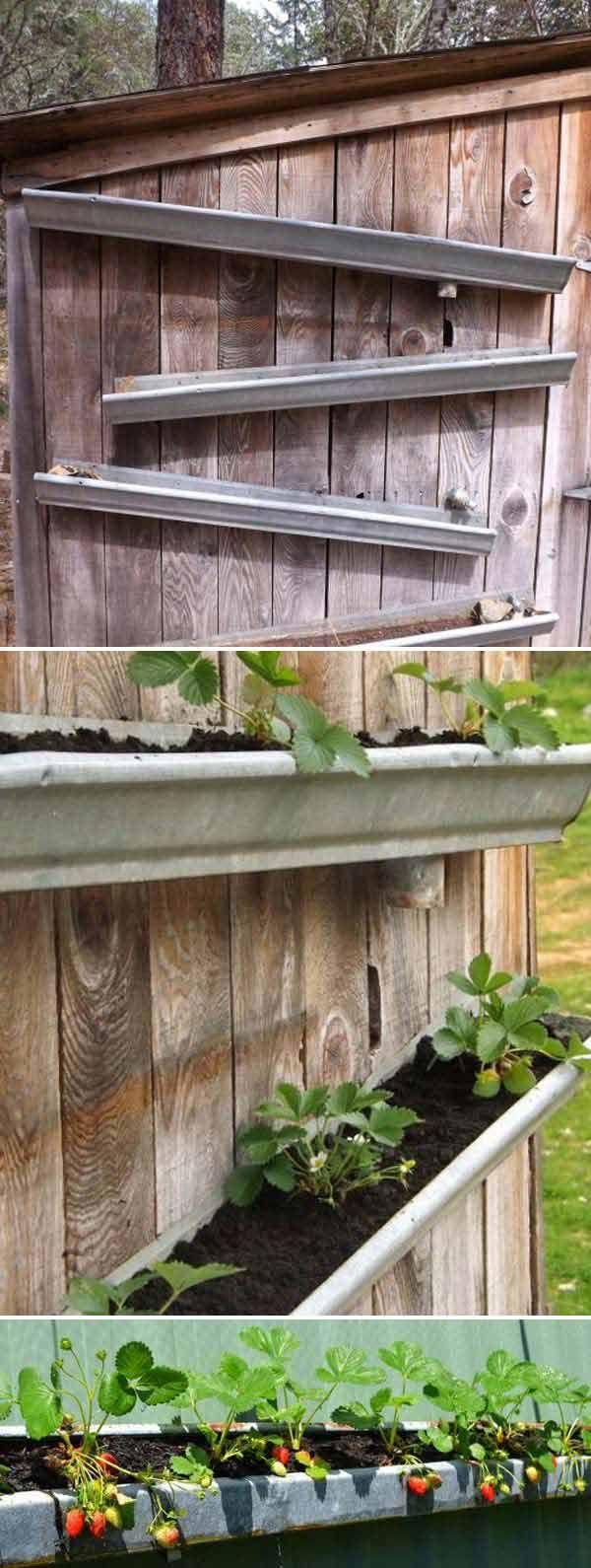 Diy vertical container strawberry planters rain gutters strawberry garden