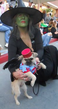 My Wizard of OZ Wicked Witch of the West Costume with ...