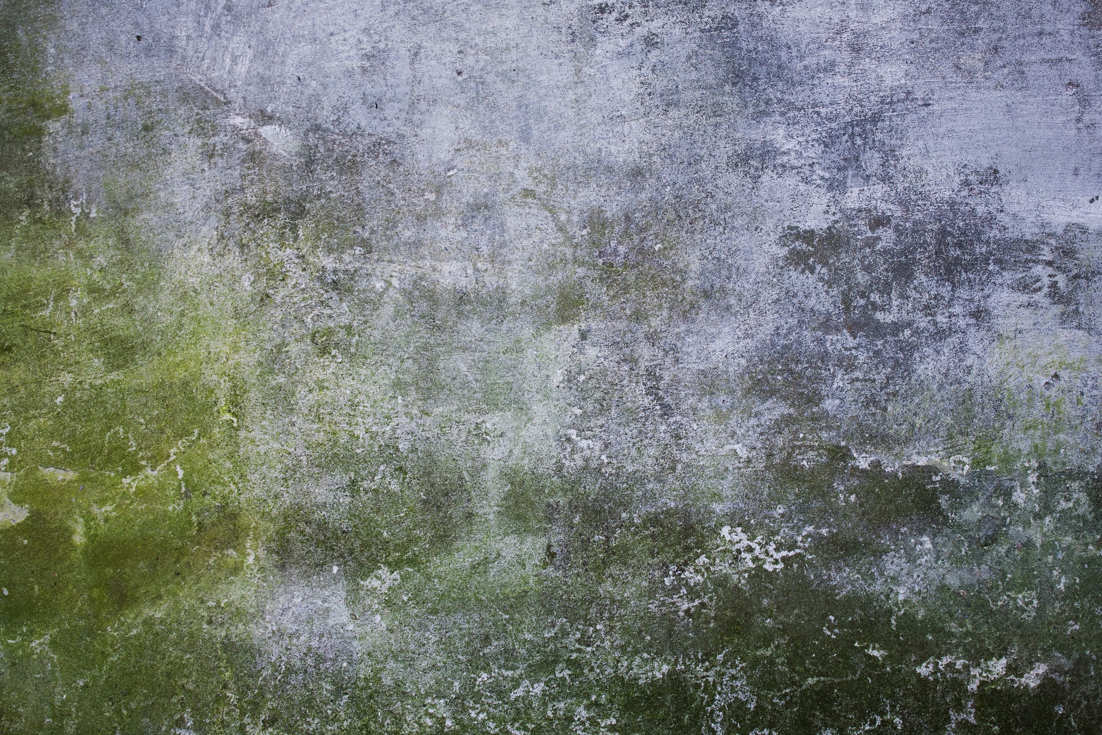 Texturing Concrete Walls Wildtextures Mossy Old Concrete Wall Jpg 36002400 Set