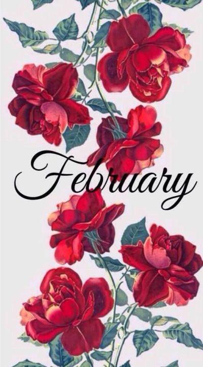 February | New Months - February | Pinterest | February, Wallpaper and Phone