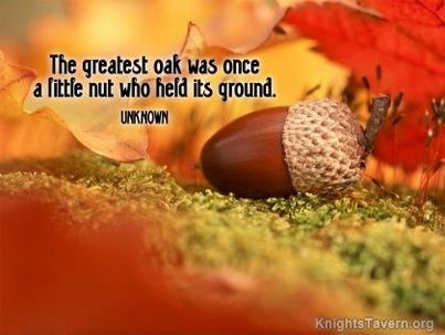 Free Fall Themed Desktop Wallpaper The Greatest Oak Was Once A Little Nut Who Held Its Ground