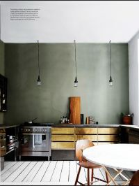slate-green wall color with brass cabinets  kitchen ...