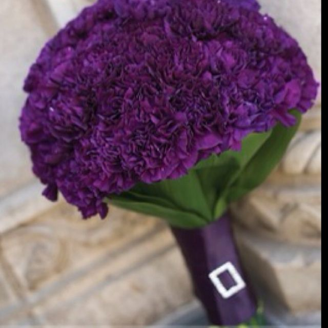Carnation Flower Corsage Best 25+ Purple Carnations Ideas On Pinterest | Purple