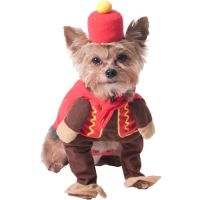 This could be a flying monkey...Circus Monkey Dog ...