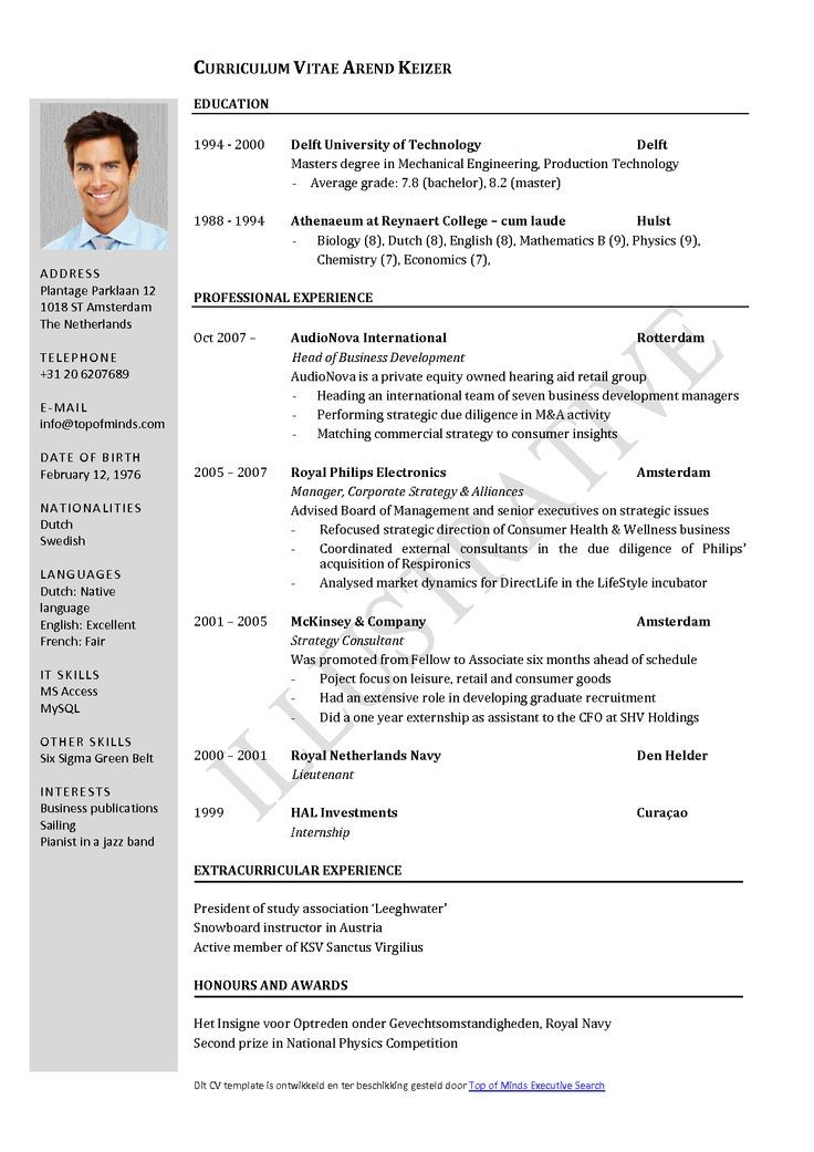 Download Word Resume Templates 7 Free Resume Templates Primer - download resume templates word