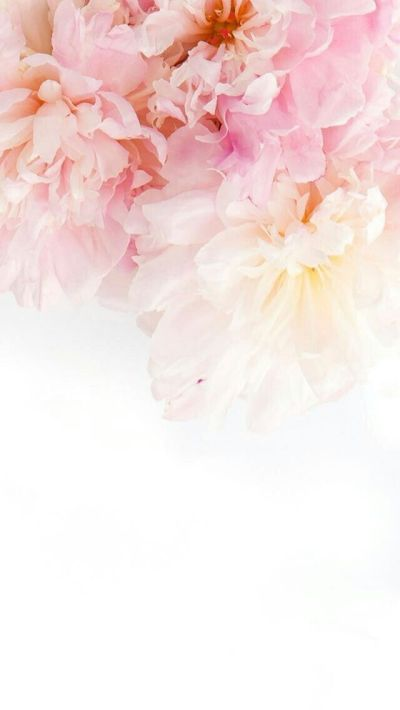 pinterest | ♡ ᒪOVEANDLOUBS ♡•• | W A L L P A P E R S | Pinterest | Wallpaper, Phone and Flowers