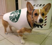 Starbucks Dog Costume - Easy and Inexpensive | Starbucks ...