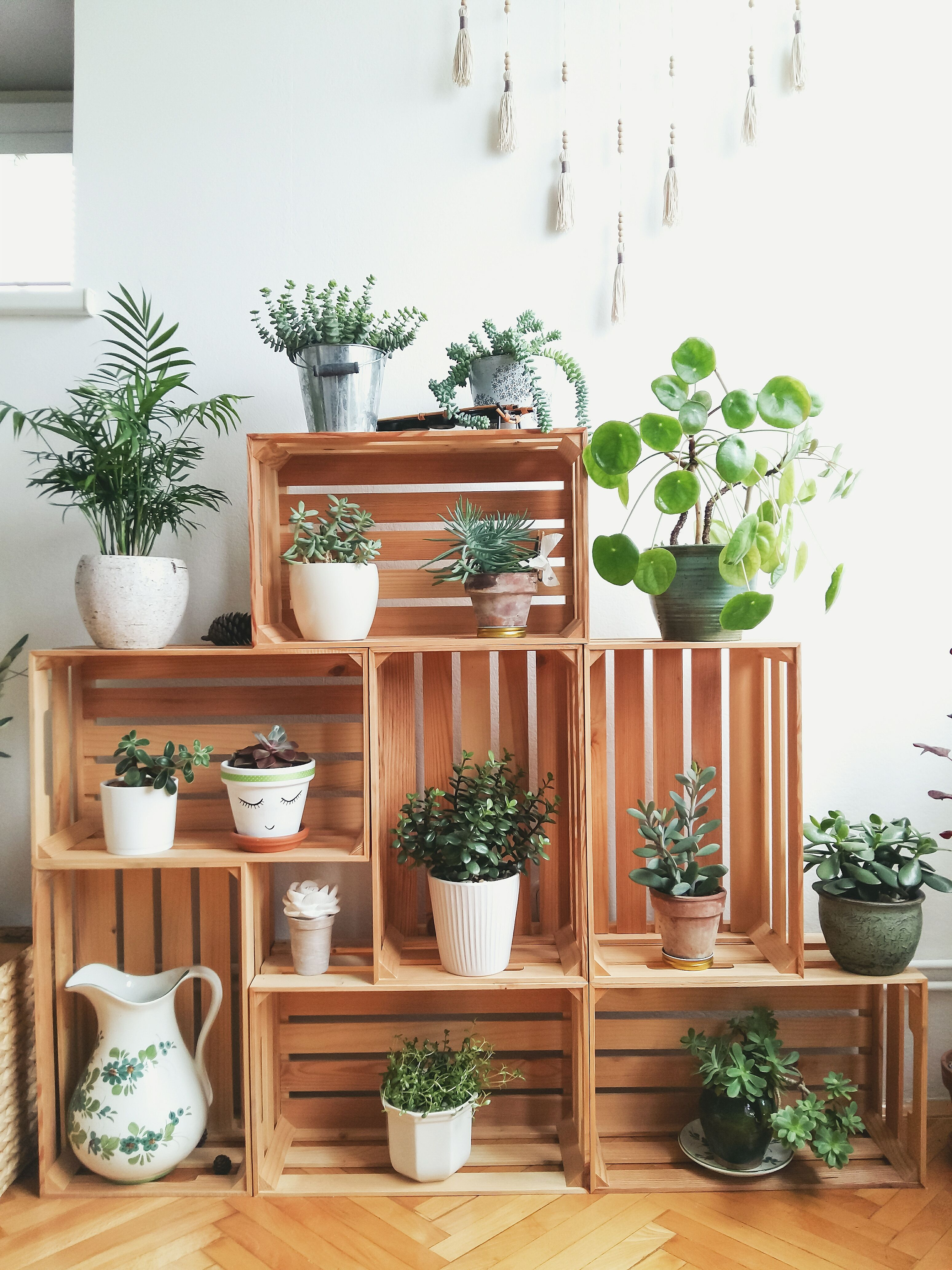 Home Decor Plants White Decor Plantitas Pinterest Crates Construction