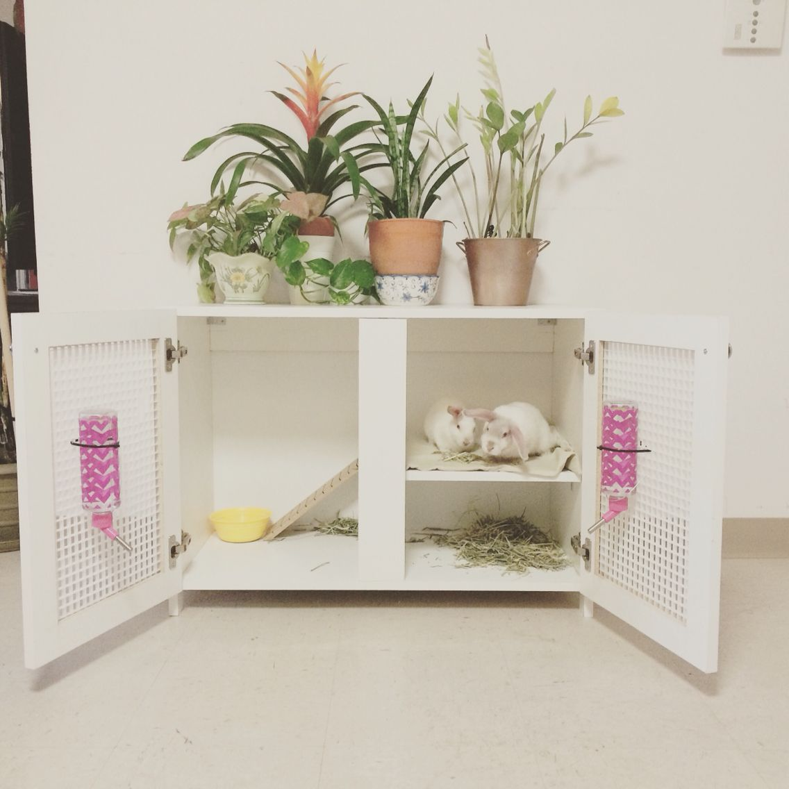 Diy Cage For Rabbit 1000 43 Ideas About Indoor Rabbit On Pinterest Rabbit