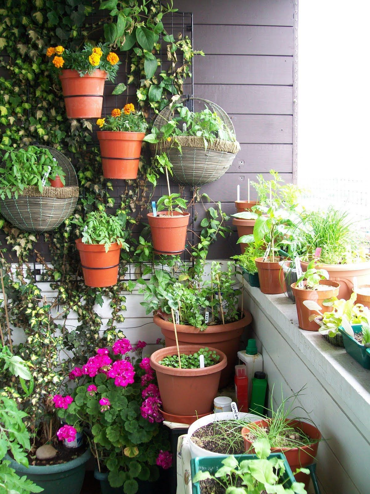 Garage beautiful small terrace garden ideas good terrace garden with wall planting