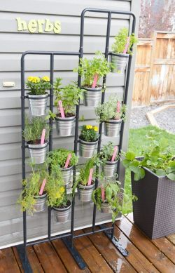 Small Of Diy Herb Gardens