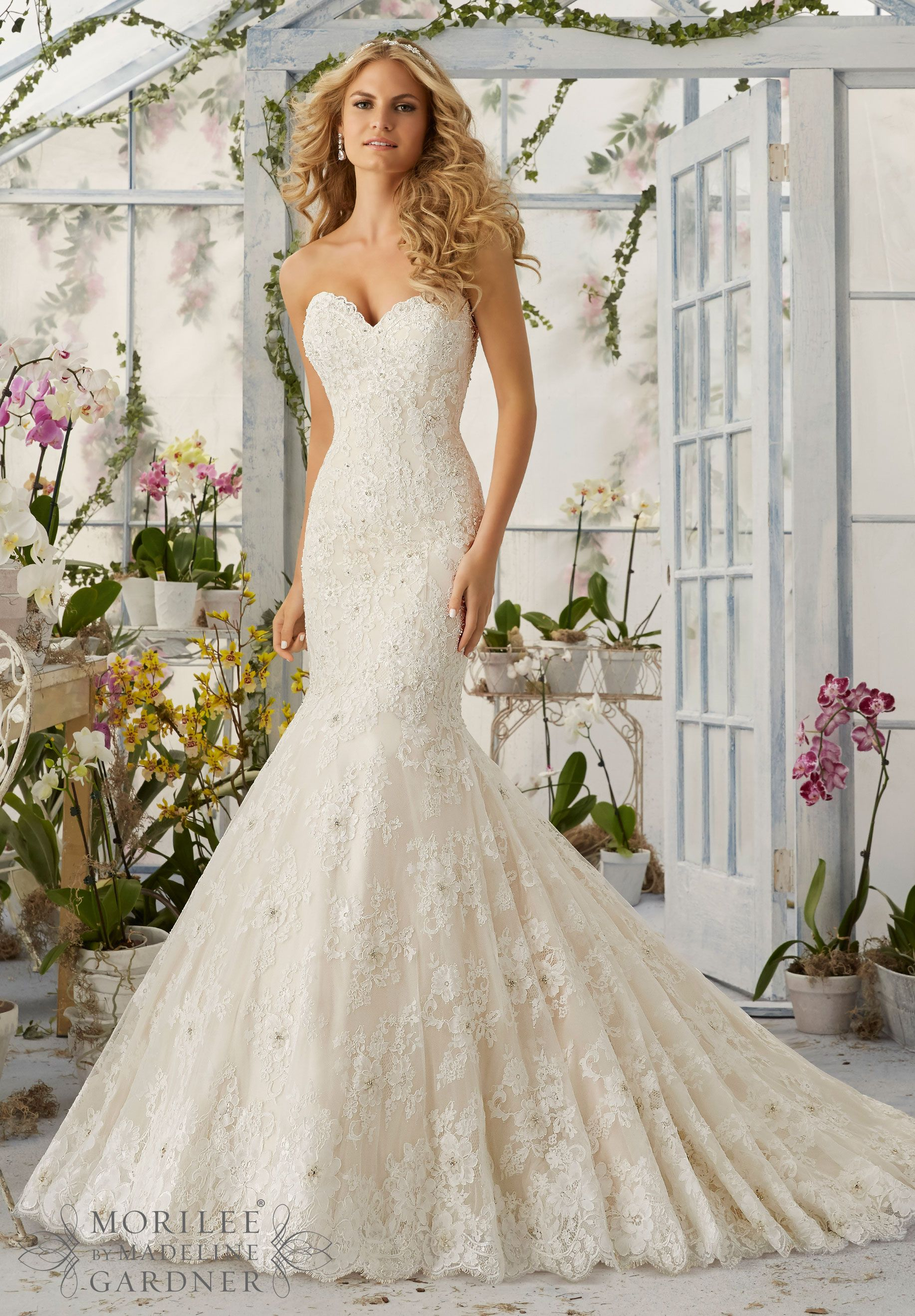 mermaid dress wedding Wedding Dresses and Wedding Gowns by Morilee featuring Allover Alencon Lace Mermaid Gown with Delicate