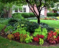 Small Yard Landscaping Ideas Shaded Area Old Rosedale ...