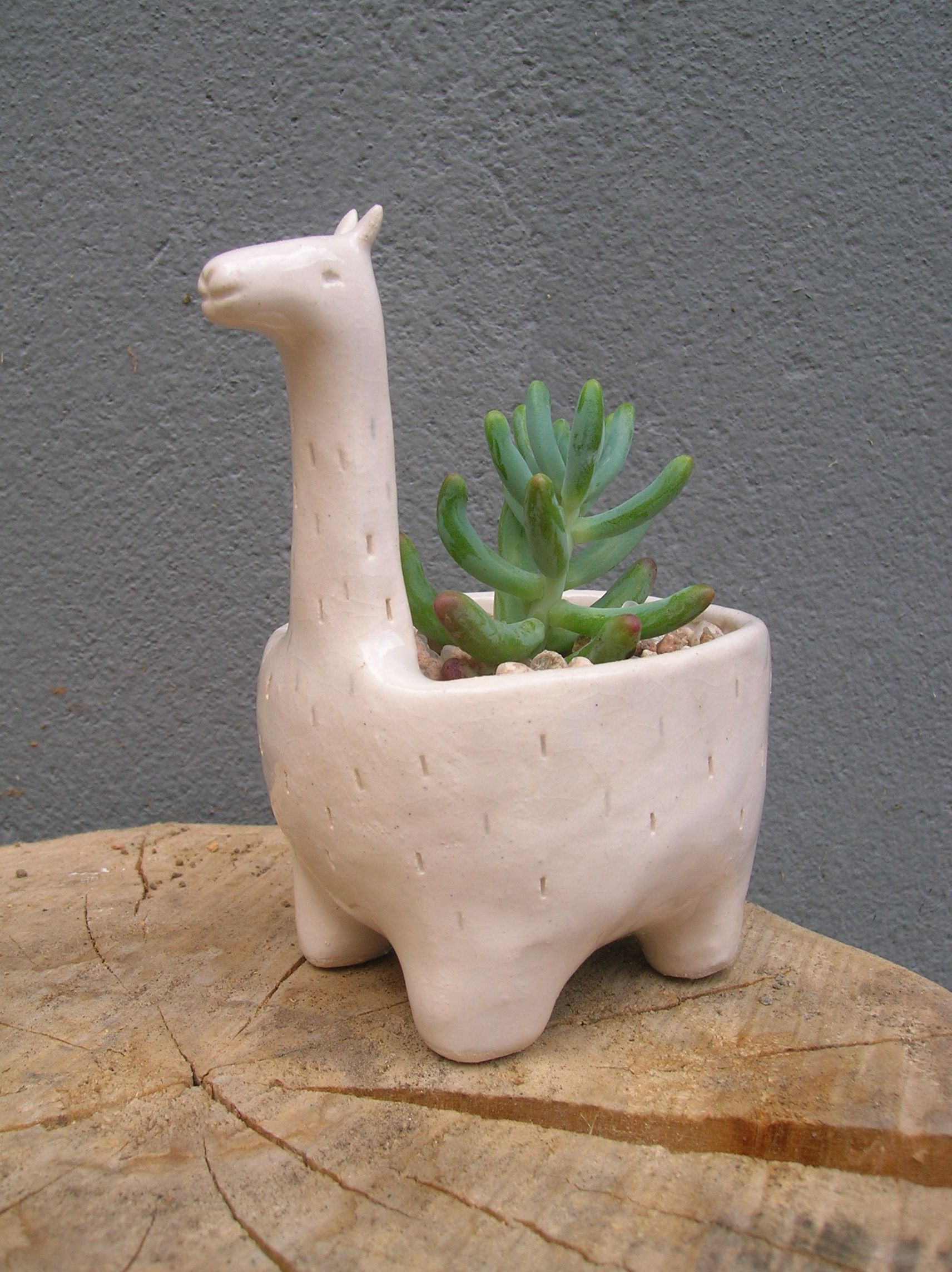 Ceramic Pottery For Plants Maceta De Cerámica Llama Verde Cactus Https Facebook