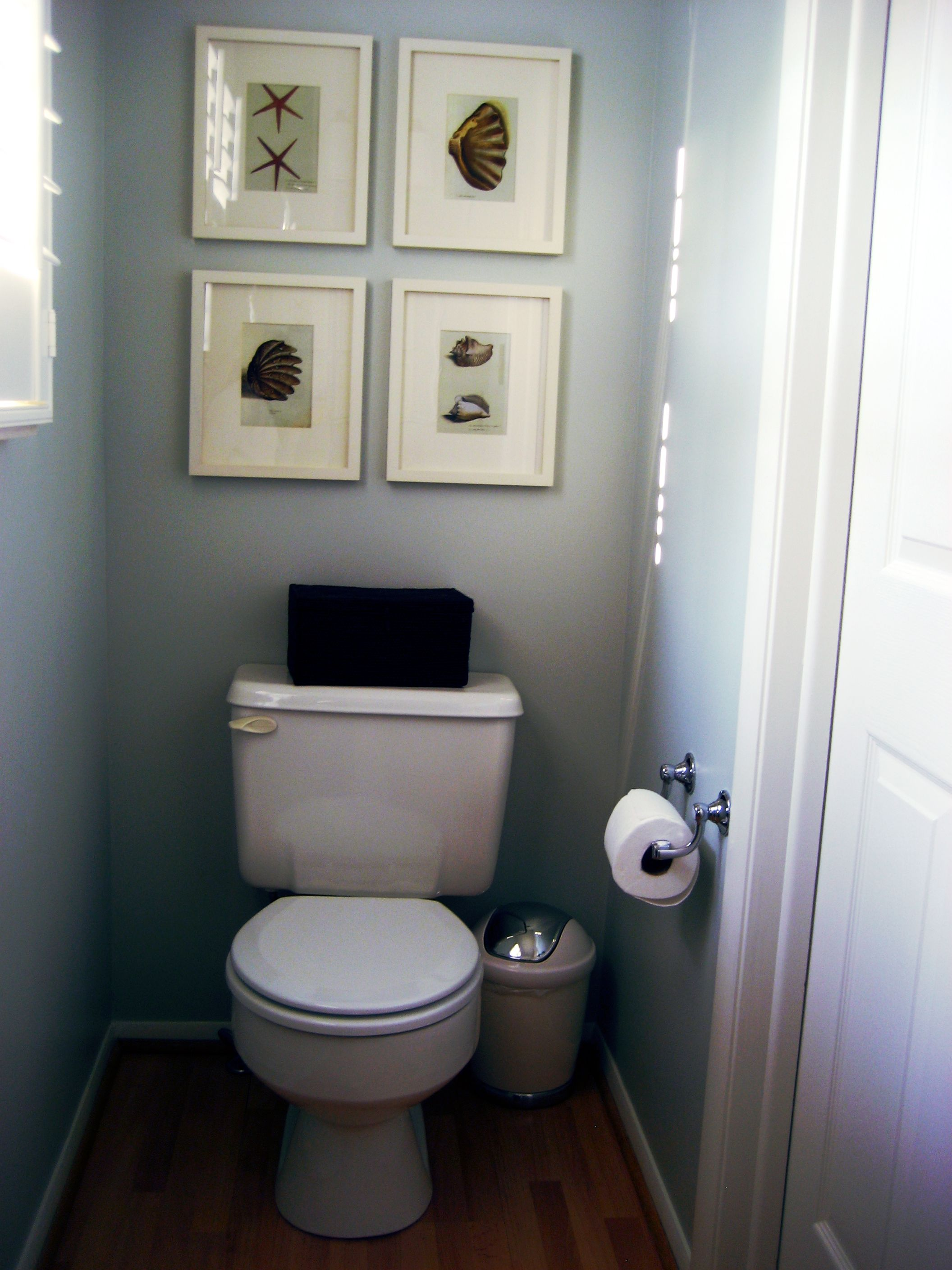 Toilet Designs Ideas Sherwin Williams Sea Salt Small Bathroom Bathrooms