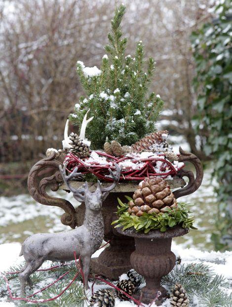 Blickfang Im Garten Wg Florapress Draussen Ideen