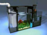 Sump Setup For Freshwater Aquarium - 1000+ Aquarium Ideas