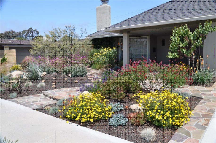 drought tolerant landscaping ideas california San Diego Drought - drought tolerant garden designs
