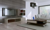 30 Contemporary Living Room Ideas | Living rooms, Living ...