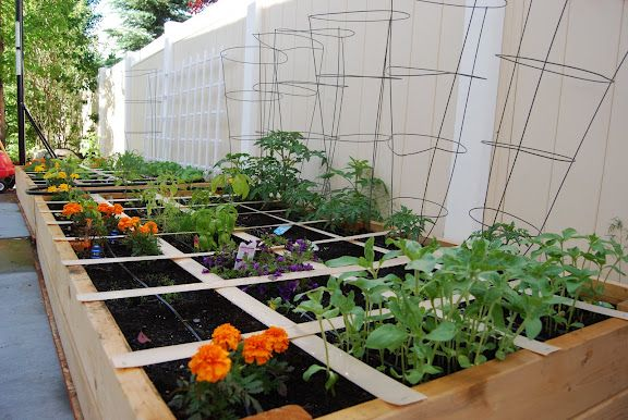 Square Foot Gardening Ideas - Cadagu.Com