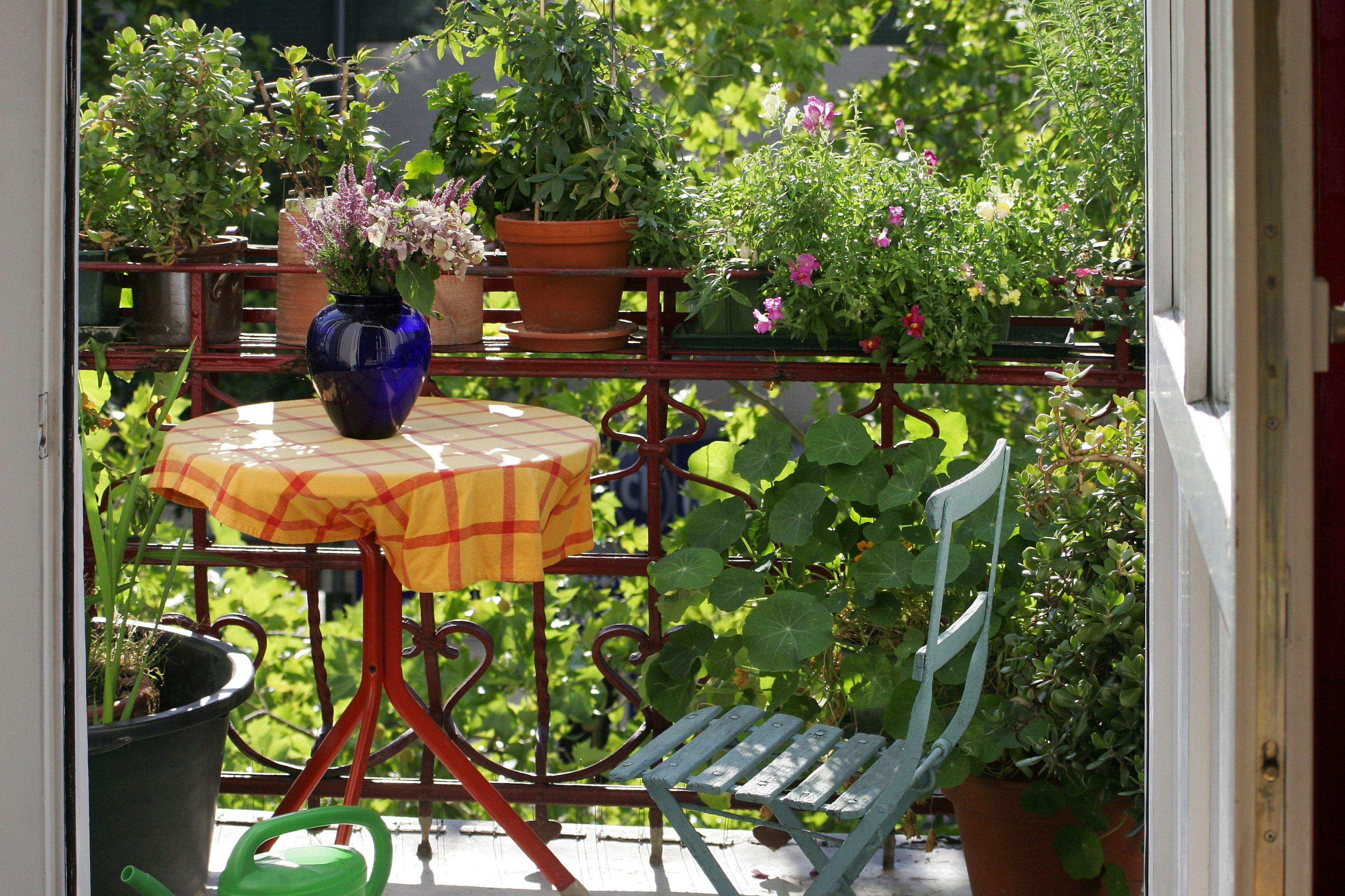 Idee Deco Jardin Fleuri | Une Chaise Percée Une Bassine émaillée Des ...