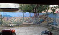 Desert landscape mural on backyard cinder block wall ...