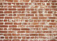 brick wall Texture, download photo, image, bricks, brick ...