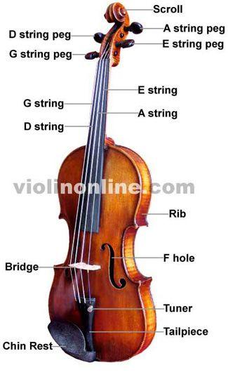 Violin Basics - Interactive fingering charts Violin Pinterest - violin fingering chart