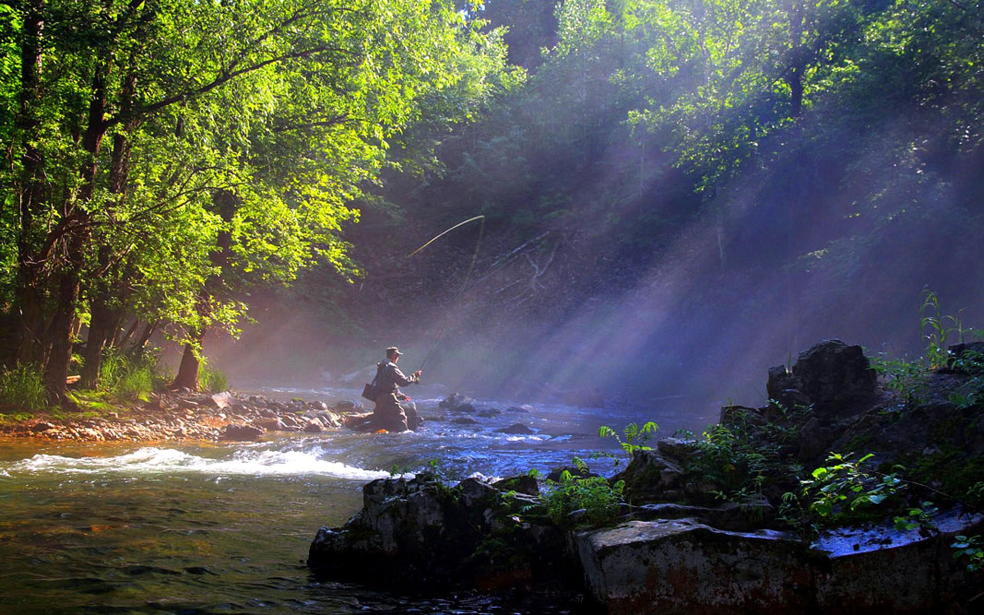 Blue Nile Falls Wallpaper Fly Fishing In A River 137378 High Quality And
