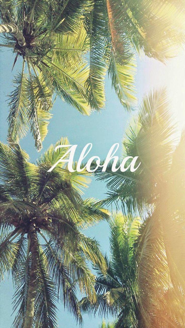 Aloha palm trees iphone 6 plus hd wallpaper