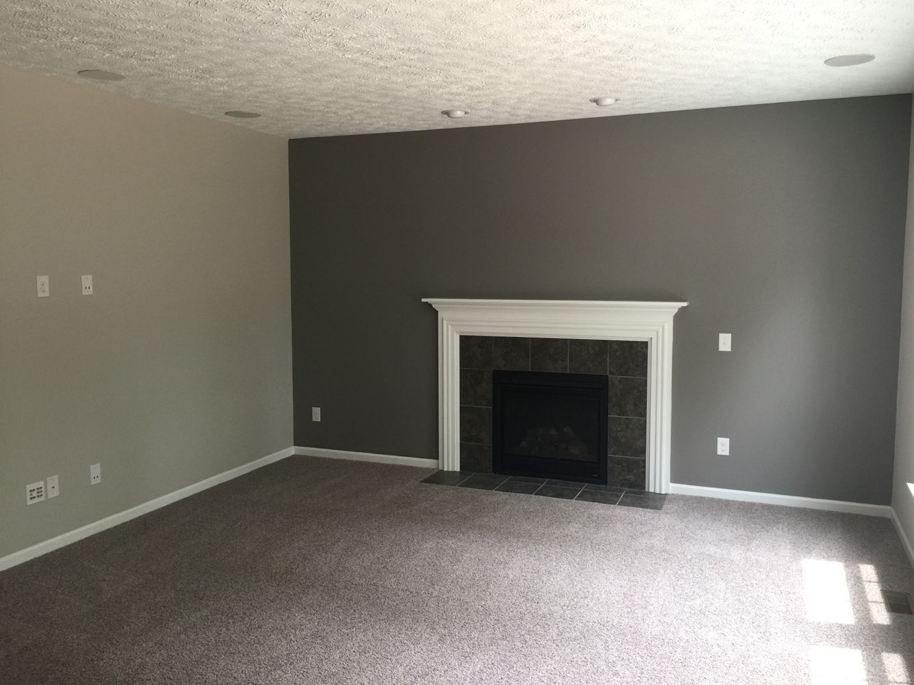 What Color Rug With Grey Walls Went With Sherwin Williams Agreeable Gray Dovetail Gray