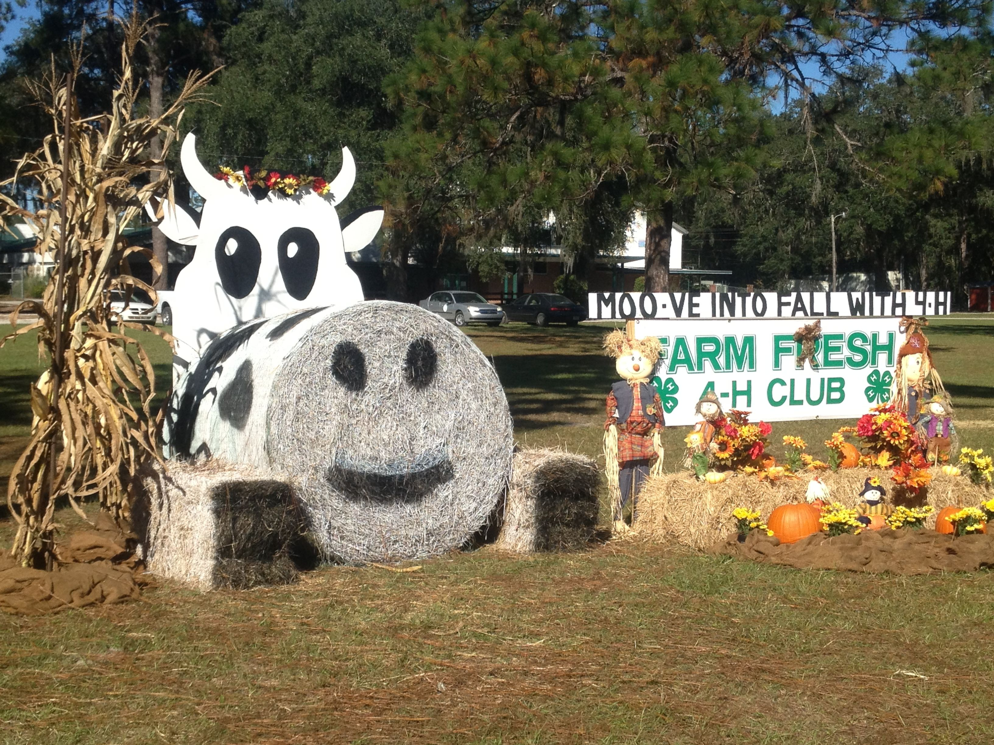 Hay Decoration Suwannee County Florida 4h Hay Bale Decorations Suwannee