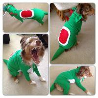 Yoshi costume for dog. | Family | Pinterest | Yoshi ...