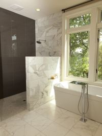 Bathroom Curbless Shower Design, Pictures, Remodel, Decor ...