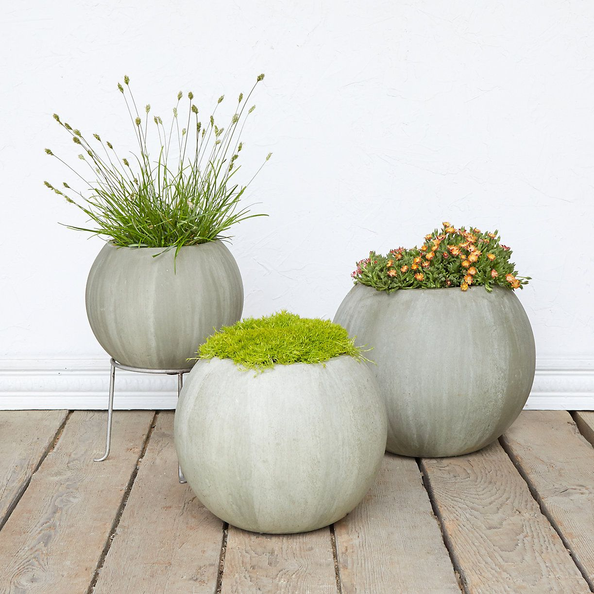 Concrete Garden Planters Mossy Sphere Planter Planters And Gardens