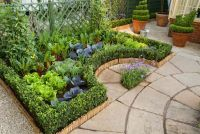 container vegetable and herb garden on deck | Growing ...