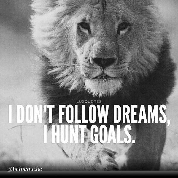 Life Quote Wallpaper M Lovethis I Don T Follow Dreams I Hunt Goals Quotes That Rock