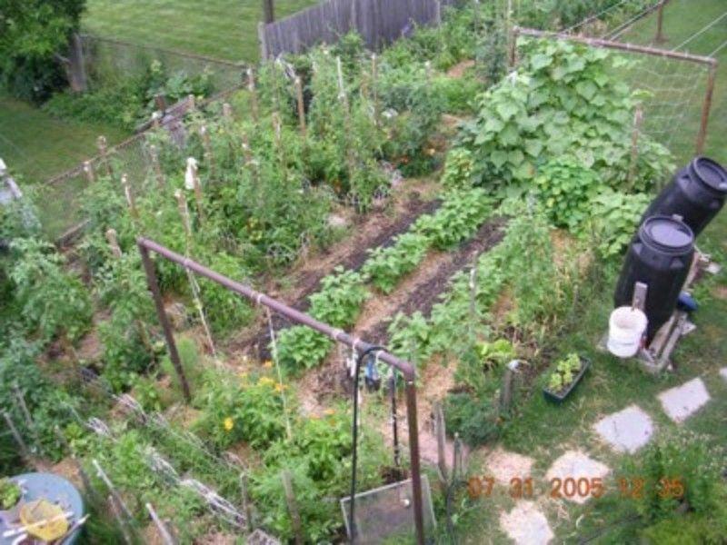 Backyard Vegetable Garden Design Ideas - Cadagu.Com
