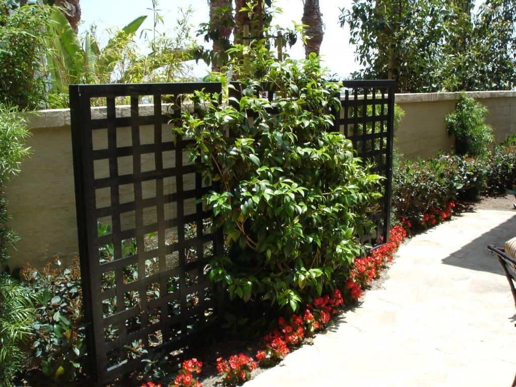Patio Screening Ideas Decorative Privacy Screen Front Patio Ideas Pinterest