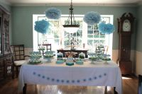 Owl-Themed Baby Shower Ideas - Photos and Homemade ...